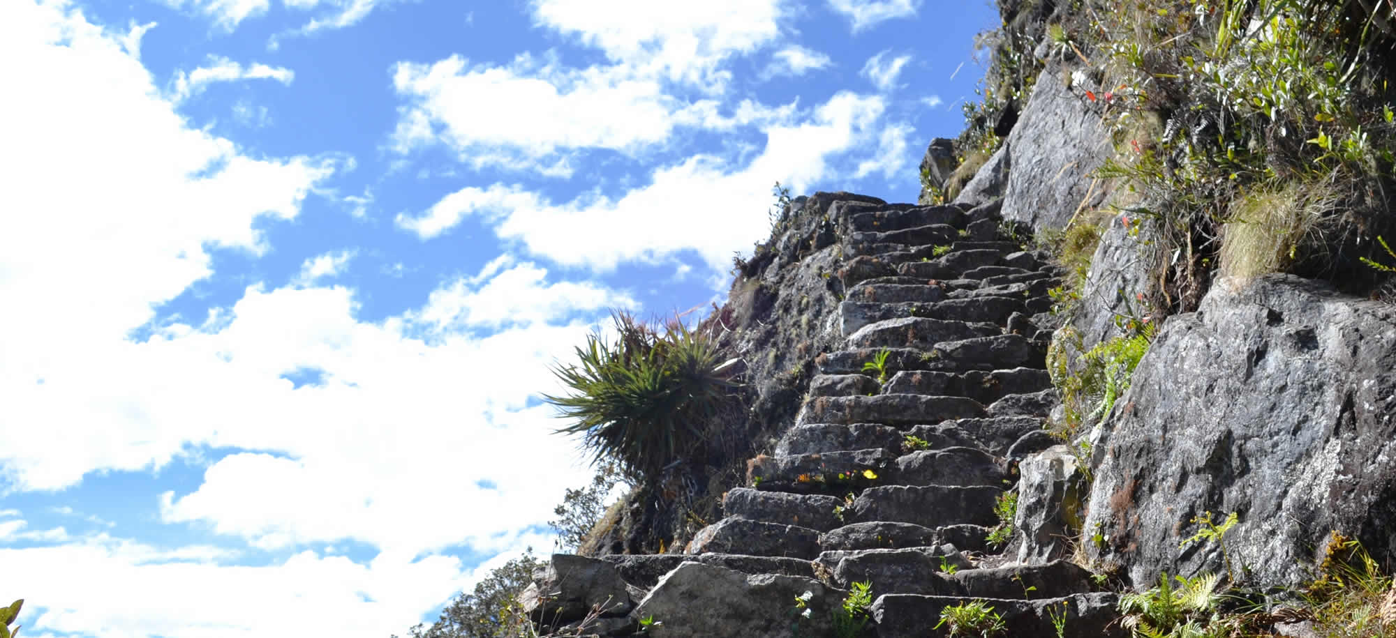 montaña huayna picchu